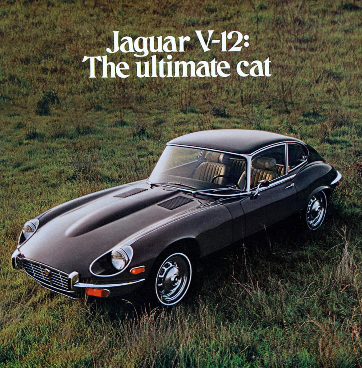 1000 images about jaguar e type on pinterest jaguar. Black Bedroom Furniture Sets. Home Design Ideas