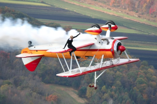 Jane Wicker - Wing Walk
